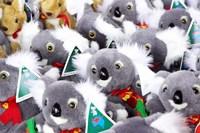 Fluffy Koalas and Kangaroos, Queen Victoria Market, Melbourne, Victoria, Australia Fine Art Print