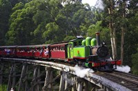 Puffing Billy Steam Train, Dandenong Ranges, near Melbourne, Victoria, Australia Fine Art Print
