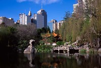Chinese Garden, Darling Harbor, Sydney, Australia Fine Art Print