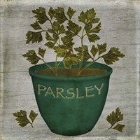 Herb Parsley Fine Art Print