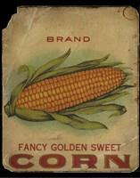 Vintage Corn Framed Print