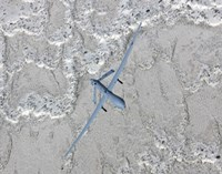 An MQ-1 Predator Flies a Training Mission over New Mexico Fine Art Print