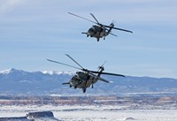 Two HH-60G Pave Hawk's over New Mexico Fine Art Print