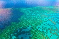 Aerial view of the Great Barrier Reef, Queensland, Australia Fine Art Print