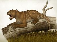 Thylacoleo Carnifex Fine Art Print