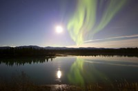 Aurora Borealis with Full Moon over the Yukon River in Canada Fine Art Print
