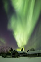 Aurora Borealis and the Big Dipper Whitehorse, Yukon, Canada Fine Art Print