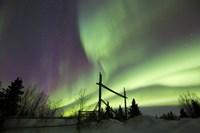 Aurora Borealis over a Ranch, Whitehorse, Yukon, Canada Fine Art Print
