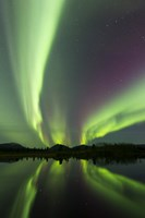 Aurora borealis over Fish lake, Whitehorse, Yukon, Canada (vertical) Fine Art Print