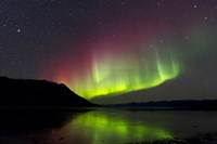 Aurora Borealis with Big Dipper over Kluane Lake, Yukon, Canada Fine Art Print