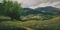 Spring in Carmel Valley Fine Art Print