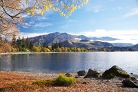 Glendhu Bay, Lake Wanaka, Otago, South Island, New Zealand Fine Art Print