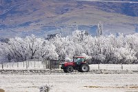 Tractor and Hoar Frost, Sutton, Otago, South Island, New Zealand Fine Art Print