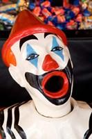 Laughing Clown, Bay of Plenty, North Island, New Zealand Fine Art Print