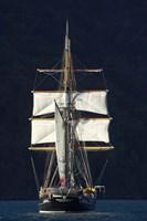 Spirit of New Zealand Tall Ship, Marlborough Sounds, South Island, New Zealand Fine Art Print