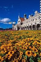 Historic Railway Station and field of flowers, Dunedin, New Zealand Fine Art Print