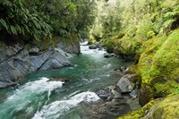New Zealand, South Island, Crocked River Fine Art Print