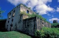 Sugar Plantation Ruins, Betty's Hope, Antigua, Caribbean Fine Art Print