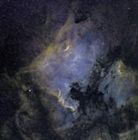 The North America Nebula and the Pelican Nebula Fine Art Print