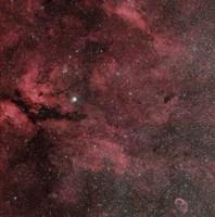 The Sadr Region with the Crescent Nebula Fine Art Print