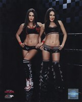 The Bella Twins 2014 Framed Print