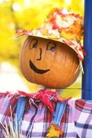 WA, Chelan, Halloween holiday Scarecrow Fine Art Print