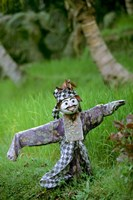 Village Scarecrow, Rice Fields, near Tegallalan, Bali, Indonesia Fine Art Print