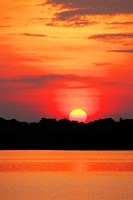 Amazon Jungle, Brazil, Sunset Fine Art Print