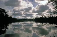 Clouds over Amazon River, Amazon River Basin, Peru Fine Art Print