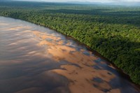Essequibo River, between the Orinoco and Amazon, Iwokrama Reserve, Guyana Fine Art Print