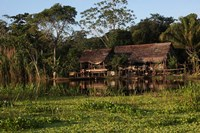 Scenes along the Amazon River in Peru Fine Art Print