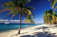 Tropical Beach on Isla de la Juventud, Cuba Fine Art Print