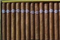 Cuba, Pinar del Rio Province, Cuban Cigars Framed Print