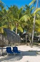 Beach Chairs, Viva Wyndham Dominicus Beach, Bayahibe, Dominican Republic Fine Art Print