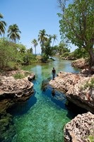 Alligator Hole, Black River Town, Jamaica, Caribbean Fine Art Print