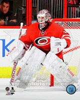 Cam Ward 2014-15 Action Fine Art Print