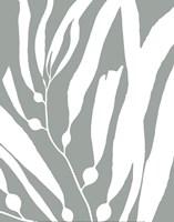 Seagrass I Framed Print