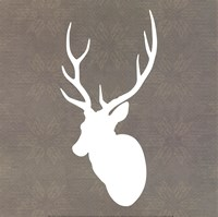 Buck I Fine Art Print