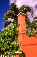 Charlotte Amalie, St Thomas, Caribbean Fine Art Print