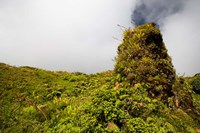 Rim of Summit Crater on Mt Pelee, Martinique, French Antilles Fine Art Print