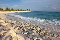 Waves, Coral, Beach, Punta Arena, Mona, Puerto Rico Fine Art Print