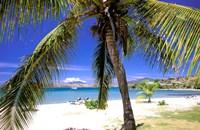 Qualie Beach, Nevis, Caribbean Fine Art Print