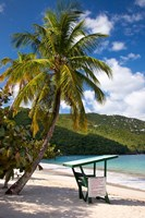 Beach, Lifeguard post, St Thomas, US Virgin Islands Fine Art Print