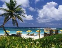 Dawn Beach on St Martin, Caribbean Fine Art Print