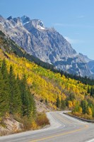 Canada, Alberta, Jasper NP Scenic of The Icefields Parkway Fine Art Print