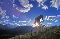 Mountain Biker at Sunset, Canmore, Alberta, Canada Fine Art Print