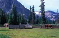 Log Cabin, Horse and Corral, Banff National Park, Alberta, Canada Fine Art Print