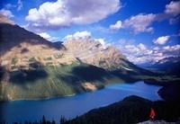 Hiker Overlooking Peyto Lake, Banff National Park, Alberta, Canada Fine Art Print