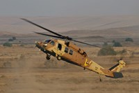 An UH-60L Yanshuf helicopter of the Israeli Air Force Fine Art Print