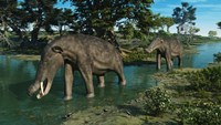 A pair of Platybelodon grazing in a shallow stream Fine Art Print